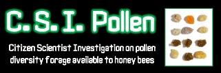 Pollenbild
